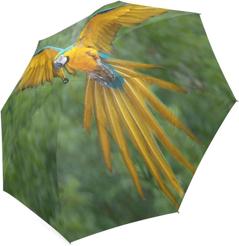 Custom Colorful Parrots Compact Travel Windproof Rainproof Foldable Umbrella