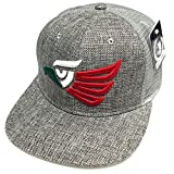 Hecho En Mexico Emblem Hat Straw Woven Black, Grey Snapback Mesh Trucker Flat Bill Cap (Gray)