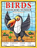 Birds: Colour by Number book for Kids and preschoolers