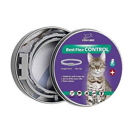 EXPAWLORER Collar para pulgas y garrapatas de Gato, para ...
