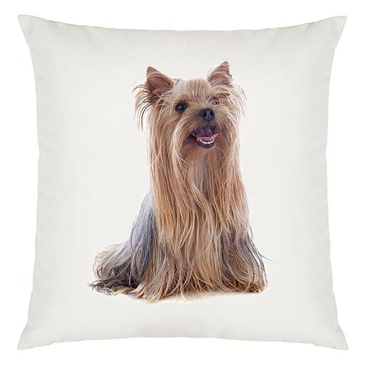 Yorkshire Terrier de perro Diseño de imágenes funda cojín ...