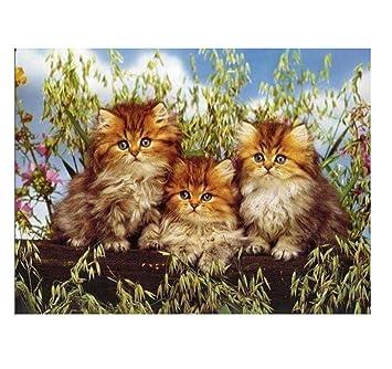 WHXJ Tres Gatos Bordado Punto De Cruz Rhinestone Pintura ...