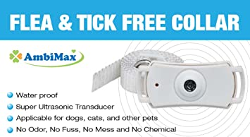 Amazon.com : (2 Pack) Flea and Tick Collar. Ultrasonic flea and tick control collar for dogs and cats. Flea Free collar. : Pet Supplies
