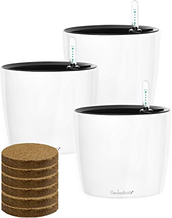 GardenBasix self watering pot product image