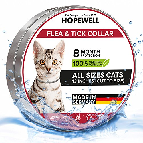 Hopewell Cat collar