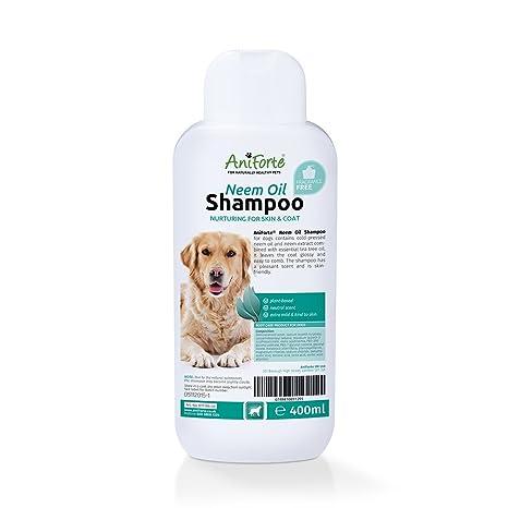 AniForte Champú para Perro de Aceite de neem 400 ML Champú Fresco, Sensible y Natural