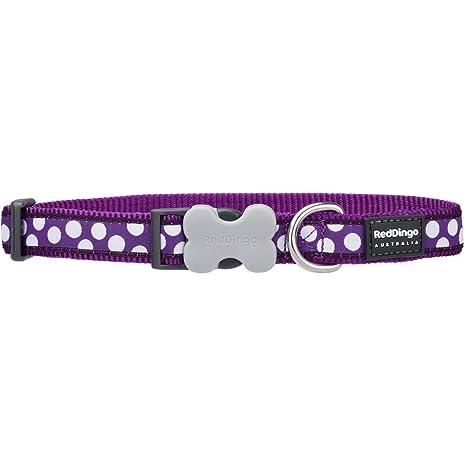 Red Dingo GmbH Spots - Collar para perro , Morado, S: Amazon.es ...