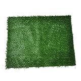 "Golden Moon Pet Grass Mat Series PE Artificial Turf Antibacterial Pet Potty Trainer Indoor Outdoor Replacement Pet Grass Mat, 25""x15"""