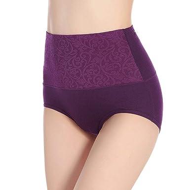 3836d16d9 Modish Collection Tummy Tucker Hipster High Waist Panties for Women High  Waist Underwear
