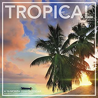 2018 Tropical Getaway Wall Calendar (Landmark)