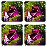 MSD Square Coasters Non-Slip Natural Rubber Desk Coasters design 26624924 vivid vegetable