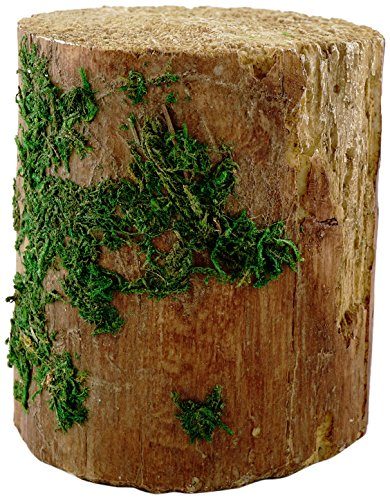 Top Collection Miniature Fairy Garden and Terrarium Statue, Decorative Mossy Tree Stump Display, 3.75-Inch by 3.25-Inch