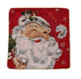 Miles Kimball Santa Claus Pillow Cover