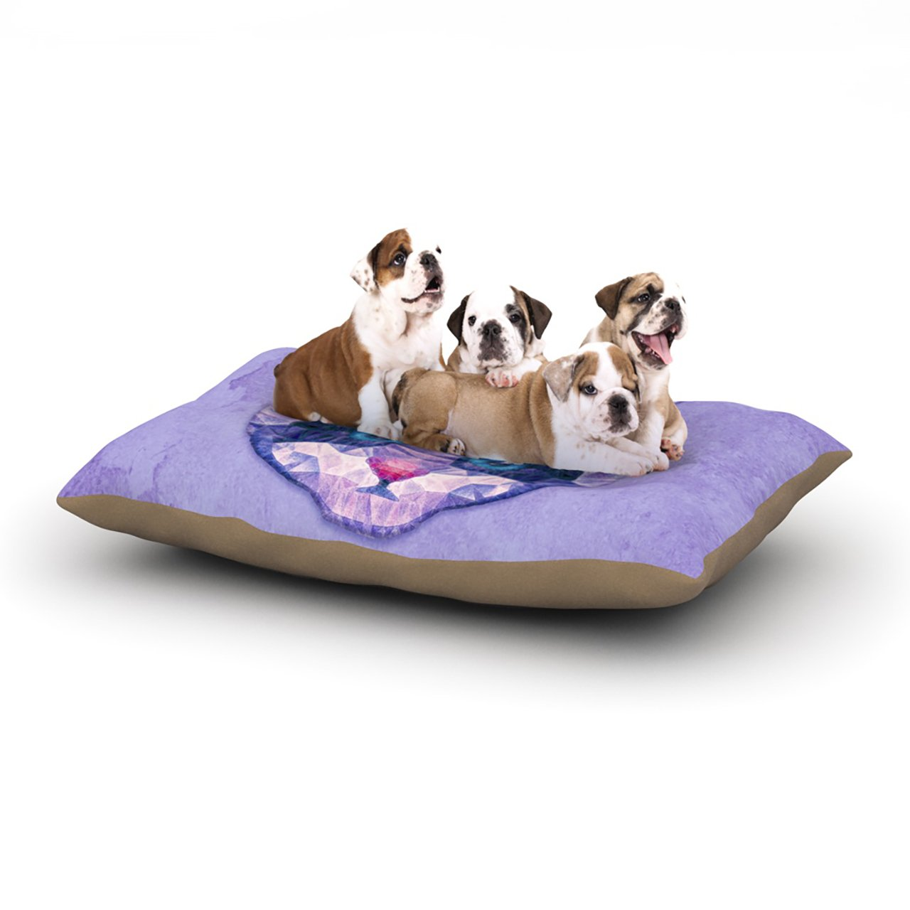 Kess InHouse Ancello ''Cute Kitten'' Purple Cat Dog Bed, 30 by 40-Inch