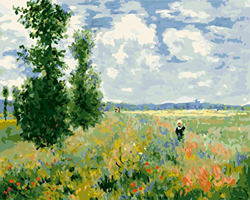 - DoMyArt Paint by Number Kit On Canvas for Adults Beginner - Poppy Field by Monet 16X20 Inch