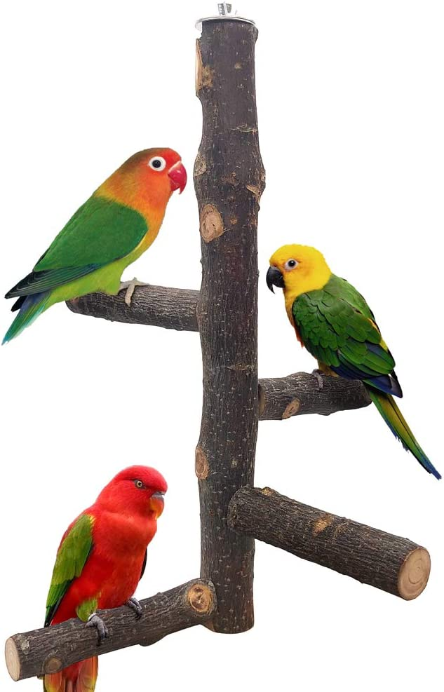 LIMIO Bird Perch Natural Crab Apple Hard Wood Stand, Conure Toys Bird Platform for Cage, Cockatiel Parakeet Cage Accessories for Small Medium Parrots
