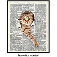 Cat Lovers Dictionary Art Print - 8x10 Funny Kitty Home Decor, Room and Wall Decoration for Veterinarian Office, Bedroom - Unique Gift for Vets and Pet Owners - Unframed Poster Print Photo Picture