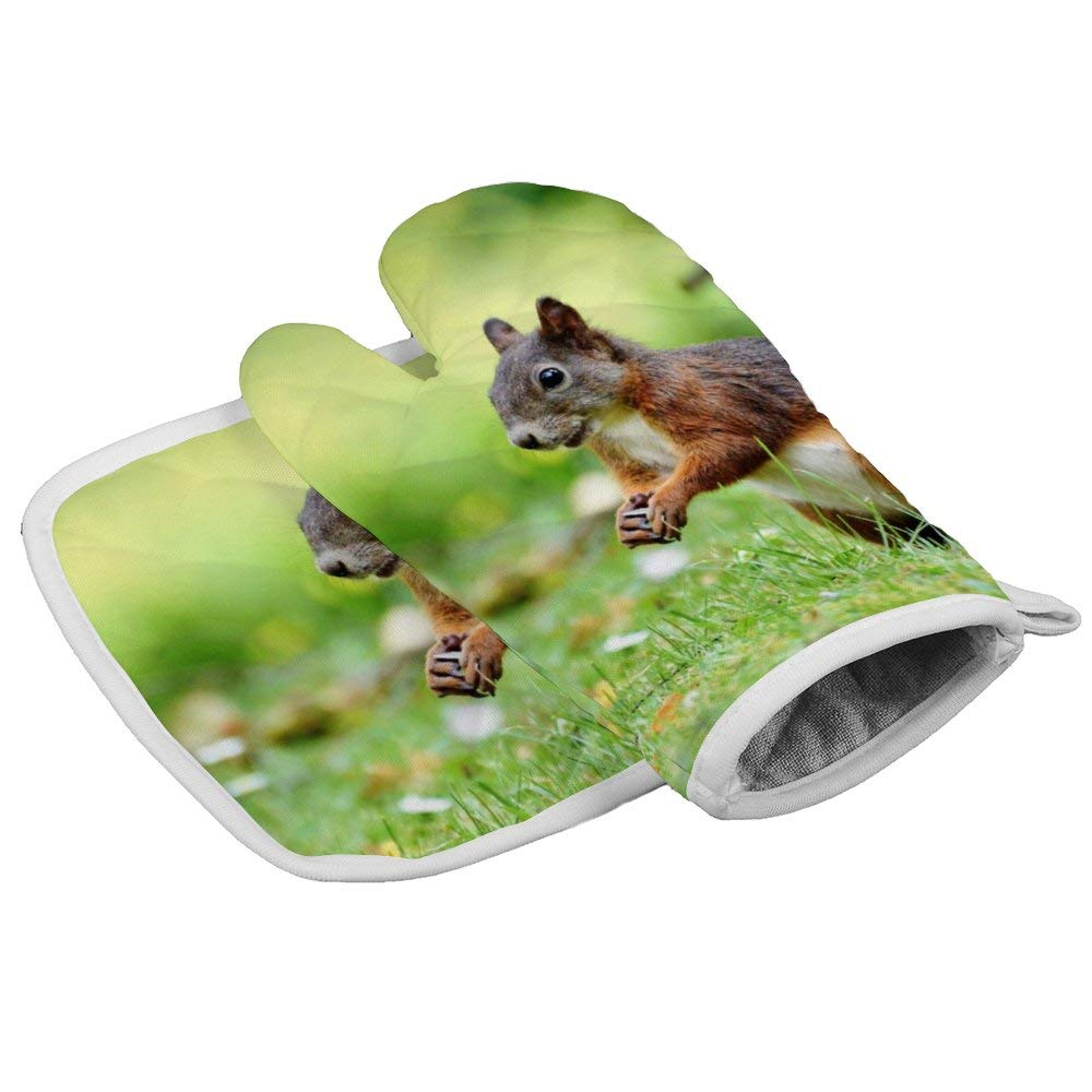 July-Seven Cute Squirrel Oven Mitts,Professional Heat Resistant Microwave BBQ Oven Insulation Thickening Cotton Gloves Baking Pot Mitts with Soft Inner Lining