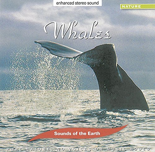 Ranking Product TOP11 Sounds Of The Whales Earth: