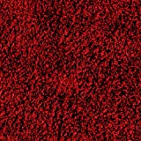 Garland Rug Jazz Shaggy Washable Nylon Rug, 30-Inch by 50-Inch, Chili Pepper Red