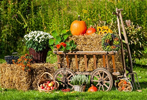 Laeacco Autumn Harvest Backdrop 7x5ft Vinyl Photography Background Scarecrow Harvest Pumpkins Patch Trolley Haystack Countryside Backdrop Farm Country Thanksgiving Rural Background California