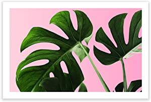 Humble Chic Wall Art Prints - Unframed HD Printed Plants Picture Poster Decorations for Home Decor Living Dining Bedroom Bathroom College Dorm Room - Monstera Palm Plant Leaf, 24x36 Horizontal