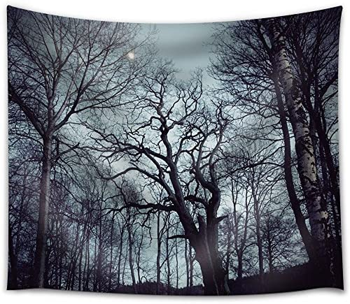 Moon Illuminating a Forest with Trees Filled with Branches