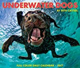 2018 Underwater Dogs Daily Desktop Box Calendar {jg} Great Holiday Gift Ideas - for mom, dad, sister, brother, grandparents, gay, lgbtq, grandchildren, grandma.