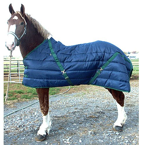 Quilted Nylon Stable Blanket - 4