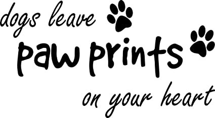 Amazon Wall Decal Quote Dogs Leave Paw Prints On Your Heart