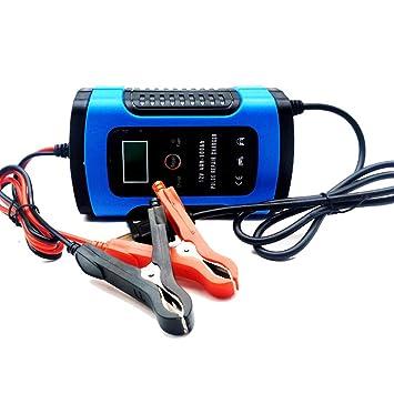 CWWHY Cargador de batería de Coche 6A / 12V Mantenedor ...