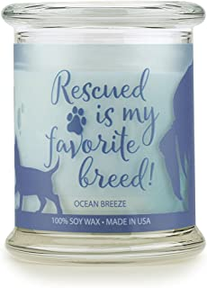 product image for Pet House Sentiments Candle, Natural Soy Wax, Pet Lover Gifts, Non-Toxic, Allergen-Free, Eco-Friendly Candle, Pet Odor Neutralizer, by One Fur All, Ocean Breeze