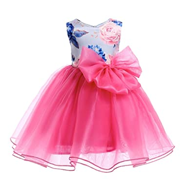 da61fe70c2ffa Amazon.com: Minisoya Flower Kids Baby Girls Princess Bridesmaid Dress  Pageant Gown Bowknot Floral Birthday Party Wedding Dress: Clothing