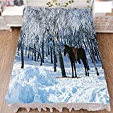 Bedding Duvet Cover Set 3D Print,Trees in Winter Forest Frozen Woods ICY Land,Fashion Personality Customization adds Color to Your Bedroom. by 70.9''x78.7''