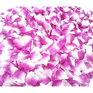 CODE FLORIST 2200 PCS Silk Rose Petals Wedding Flower Decoration