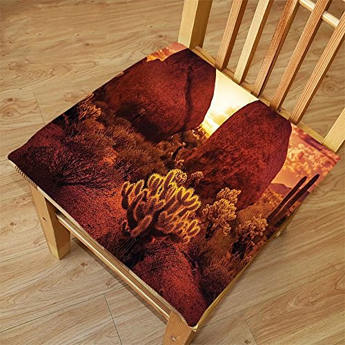 Nalahome Set of 2 Waterproof Cozy Seat Protector Cushion Saguaro Cactus Decor Dramatic Desert Scenery Like Burnt by Sun Near Scottsdale Hot Rocks Serene Western Image Red Printing Size - Sunglasses Scottsdale
