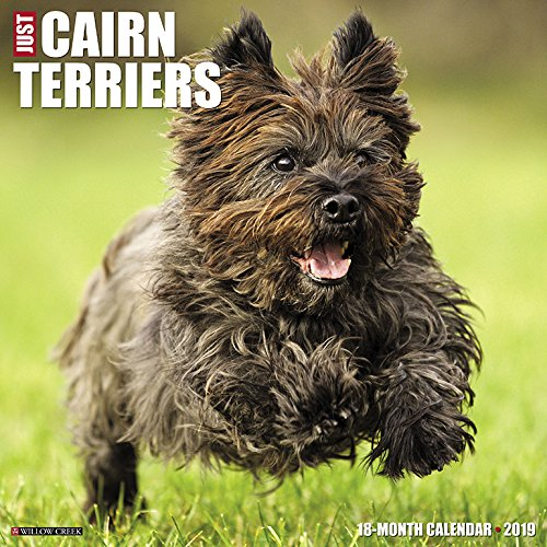 Just Cairn Terriers 2019 Wall Calendar (Dog Breed (Scottish Terrier Puppies)