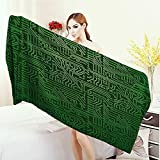 Anhounine Thick Towels Digital Computer Art Backdrop with Circuit Board Diagram Hardware Wire Illustration 3D Printed Microfiber Beach Towel 55''x27.5'' Emerald Fern Green