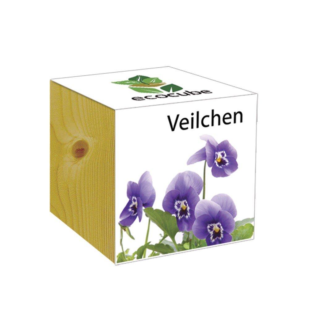 ecocube Holzwürfel - Veilchen Inventive Trading