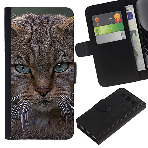 EuroCase - Samsung Galaxy S3 III I9300 - angry cat Maine coon pissed - Cuero PU Delgado caso cubierta Shell Armor Funda Case Cover