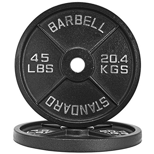 Fringe Sport 1.25lb - 45lb Iron Weight Plate Pairs/Weightlifting, Powerlifting, Other Strength Training Equipment (45)