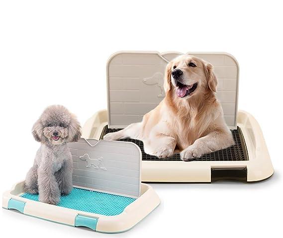 DAN Perros Animal-WC inodoro perros bandeja para entrenar perros mascotas para con pared , blue: Amazon.es: Deportes y aire libre