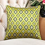 European-style pillow Feather silk cushions pillowcase for sofa and bed -A 60x60cm(24x24inch)VersionB