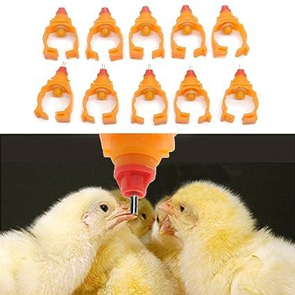 HMOCNV 10 piezas de gallina de agua bebedero pato gallina regar taza de alimentación mejor regalo