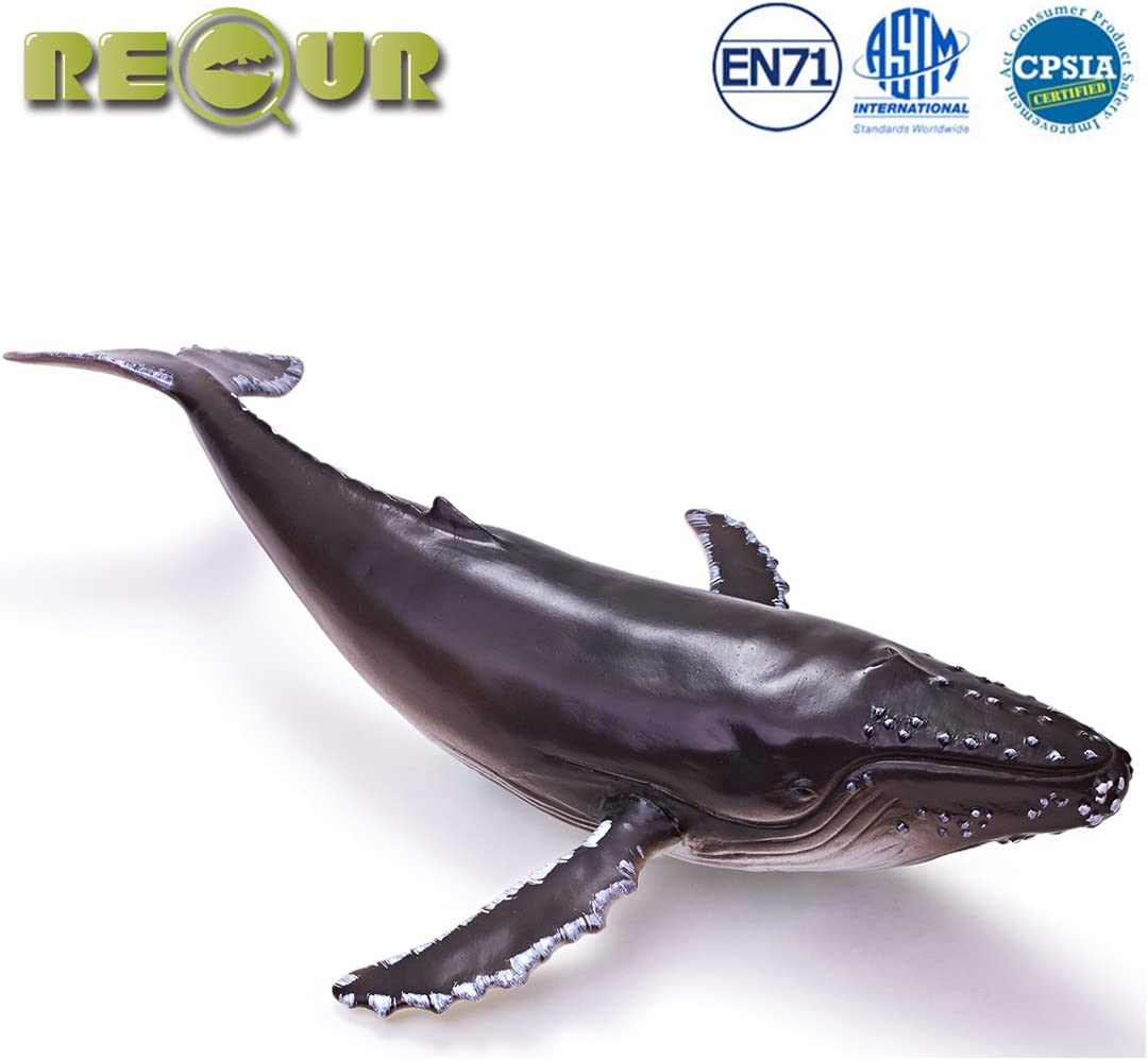 """RECUR Toys 11.6"""" Humpback Whale Figure Toys, Soft Hand-Painted Skin Texture Shark Figurine Collection-Replica 1:45 Scale Realistic Design Whale Replica, Ideal for Collectors, Ages 3 and Up"""