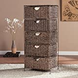 Harper Blvd Kerry Seagrass 5-Drawer Storage