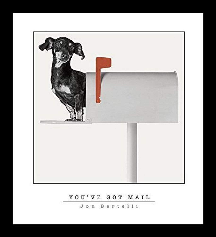 Buyartforless Framed Dachshund Weiner Dog - You've Got Mail by Jon Bertelli 20x18 Art Print Poster Wall Decor Black and White Photograph of Dog in A Mailbox