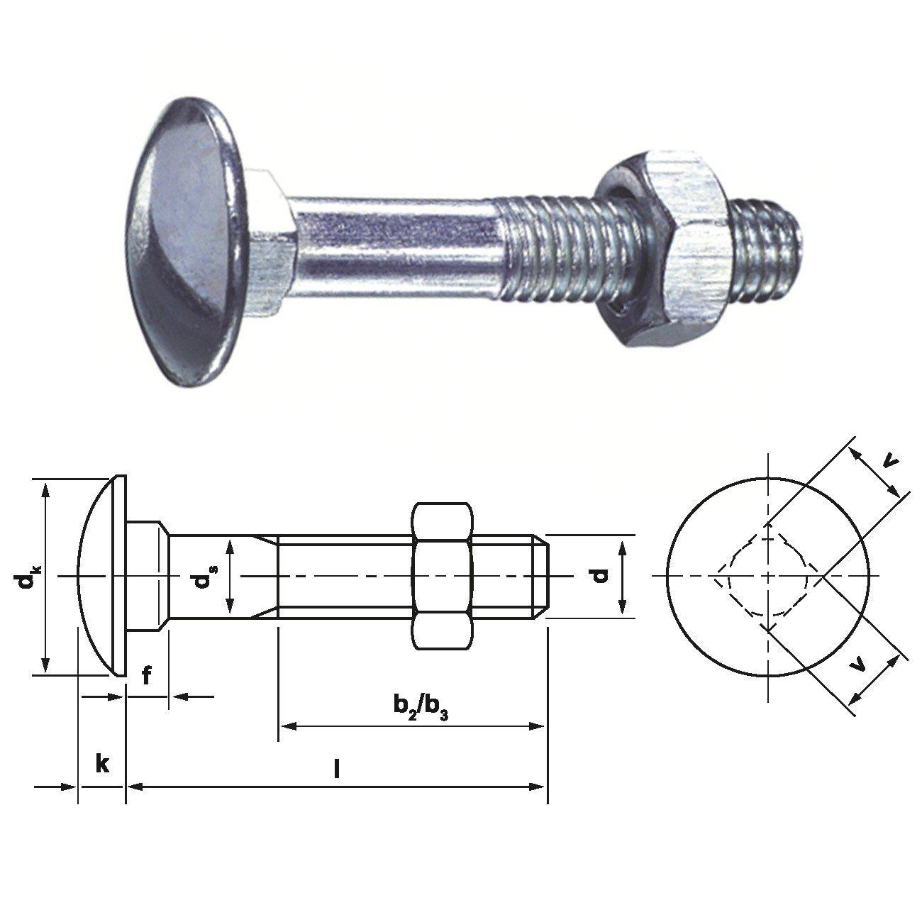 500 Tornillos de candado E-NORMpro –  Tornillo (DIN 603 galvanizado, 6 x 30 6x 30 Dresselhaus