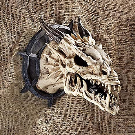 Amazon.com: Design Toscano Horned Dragon Skull Wall Trophy Sculpture, 10 Inch, Resin, Faux Bone Finish: Home & Kitchen