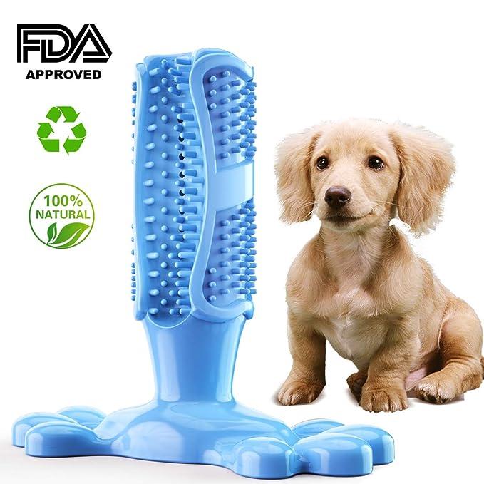 Cepillo de Dientes en Perro Jugar - Dog Brushing Stick ...